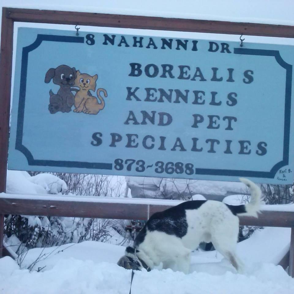 Borealis Kennels Ltd.
